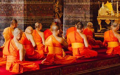 Monking around with Meditation